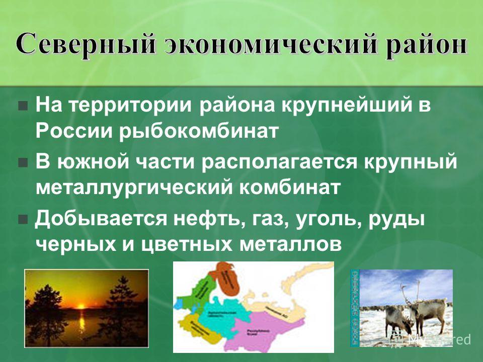 На территории района крупнейший в России рыбокомбинат В южной части располагается крупный металлургический комбинат Добывается нефть, газ, уголь, руды черных и цветных металлов