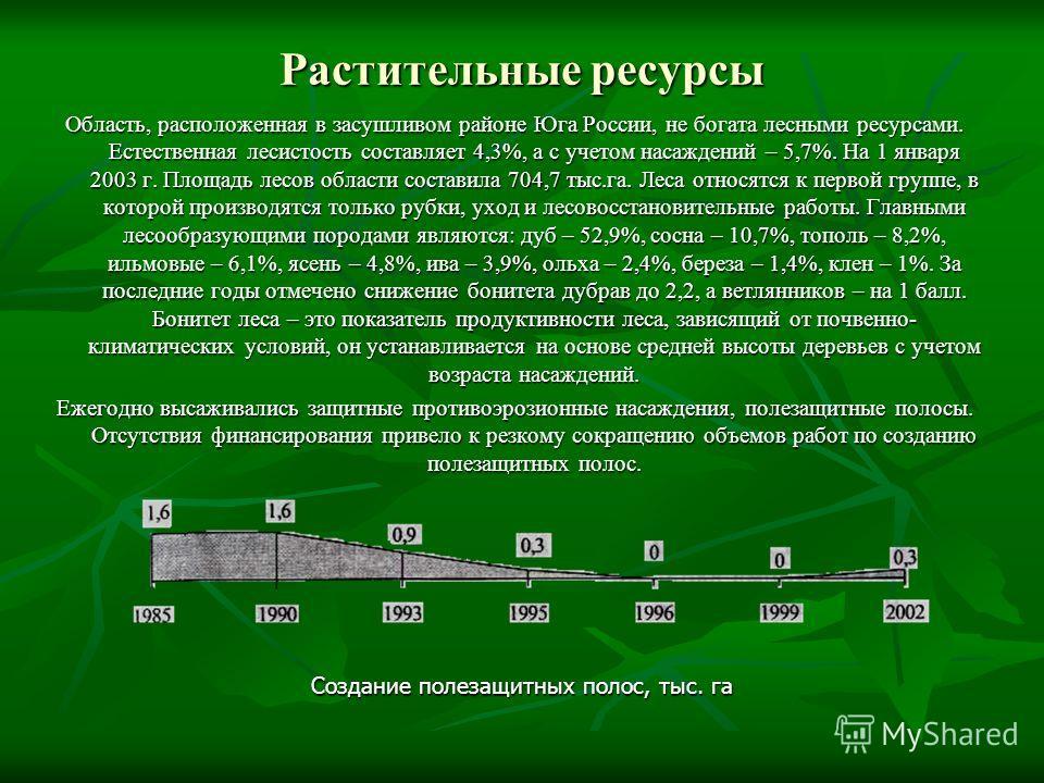 Растительные ресурсы Область, расположенная в засушливом районе Юга России, не богата лесными ресурсами. Естественная лесистость составляет 4,3%, а с учетом насаждений – 5,7%. На 1 января 2003 г. Площадь лесов области составила 704,7 тыс.га. Леса отн