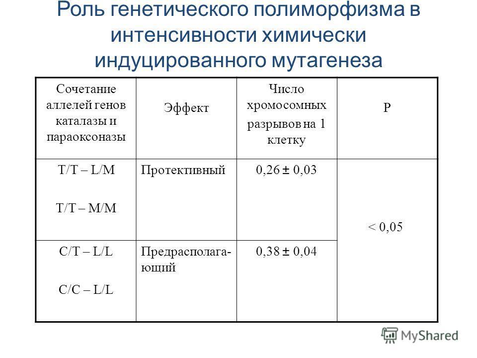 Сочетание аллелей генов каталазы и параоксоназы Эффект Число хромосомных разрывов на 1 клетку Р Т/Т – L/M T/T – M/M Протективный0,26 ± 0,03 < 0,05 C/T – L/L C/C – L/L Предрасполага- ющий 0,38 ± 0,04 Роль генетического полиморфизма в интенсивности хим