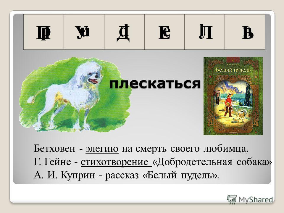 П У Д Е Л Ь Бетховен - элегию на смерть своего любимца, Г. Гейне - стихотворение «Добродетельная собака» А. И. Куприн - рассказ «Белый пудель». плескаться p u d e l n