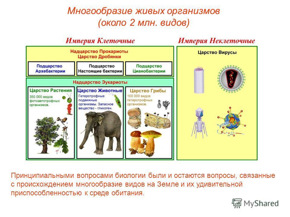 Многообразие живых организмов (около 2 млн. видов) Принципиальными вопросами биологии были и остаются вопросы, связанные с происхождением многообразие видов на Земле и их удивительной приспособленностью к среде обитания.