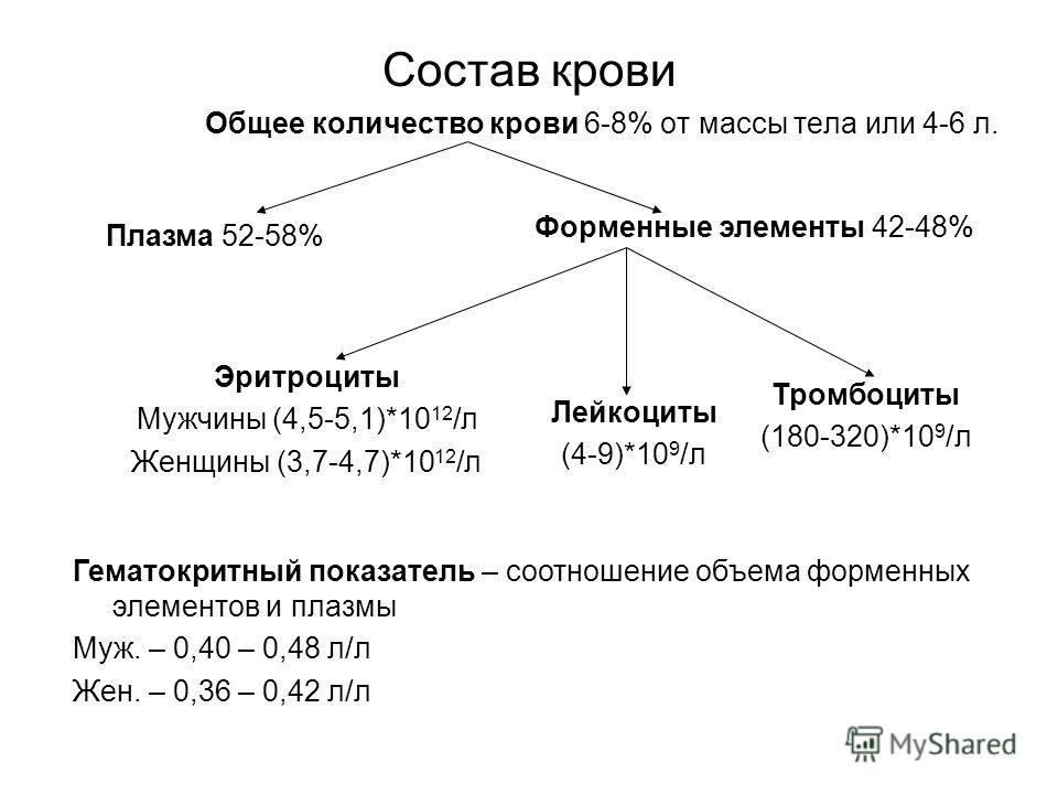 Состав крови Общее количество крови 6-8% от массы тела или 4-6 л. Эритроциты Мужчины (4,5-5,1)*10 12 /л Женщины (3,7-4,7)*10 12 /л Тромбоциты (180-320)*10 9 /л Лейкоциты (4-9)*10 9 /л Гематокритный показатель – соотношение объема форменных элементов
