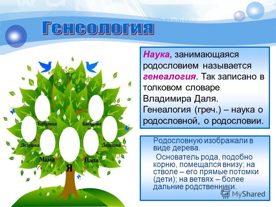 Родословную изображали в виде дерева. Основатель рода, подобно корню, помещался внизу; на стволе – его прямые потомки (дети); на ветвях – более дальние родственники. Наука, занимающаяся родословием называется генеалогия. Так записано в толковом слова