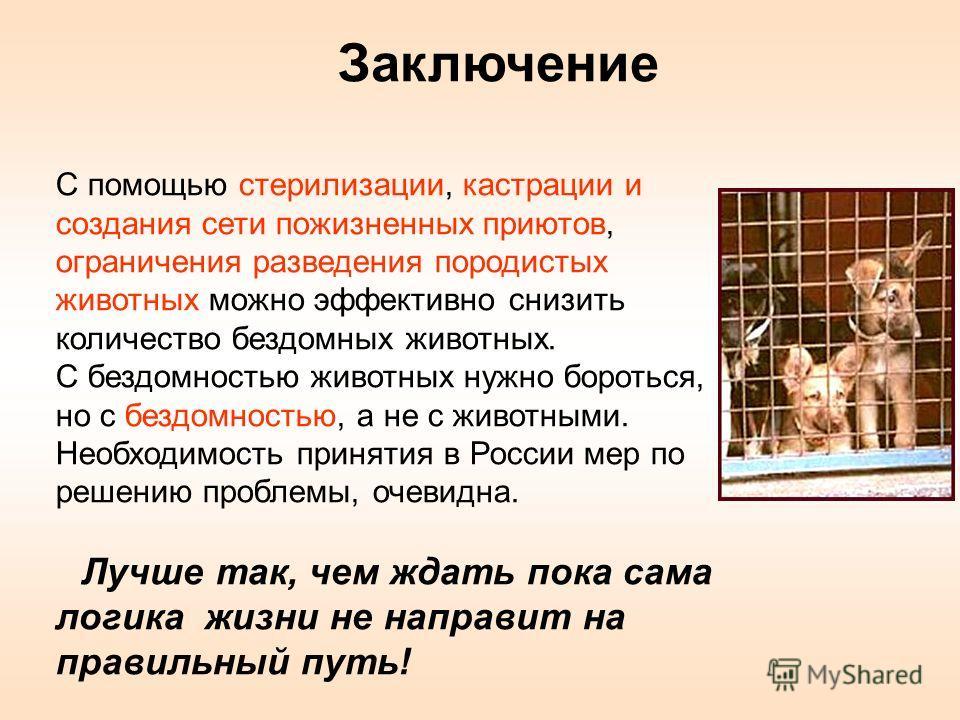 Заключение С помощью стерилизации, кастрации и создания сети пожизненных приютов, ограничения разведения породистых животных можно эффективно снизить количество бездомных животных. С бездомностью животных нужно бороться, но с бездомностью, а не с жив