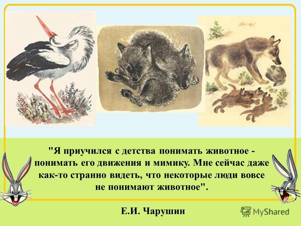 Я приучился с детства понимать животное - понимать его движения и мимику. Мне сейчас даже как-то странно видеть, что некоторые люди вовсе не понимают животное. Е.И. Чарушин