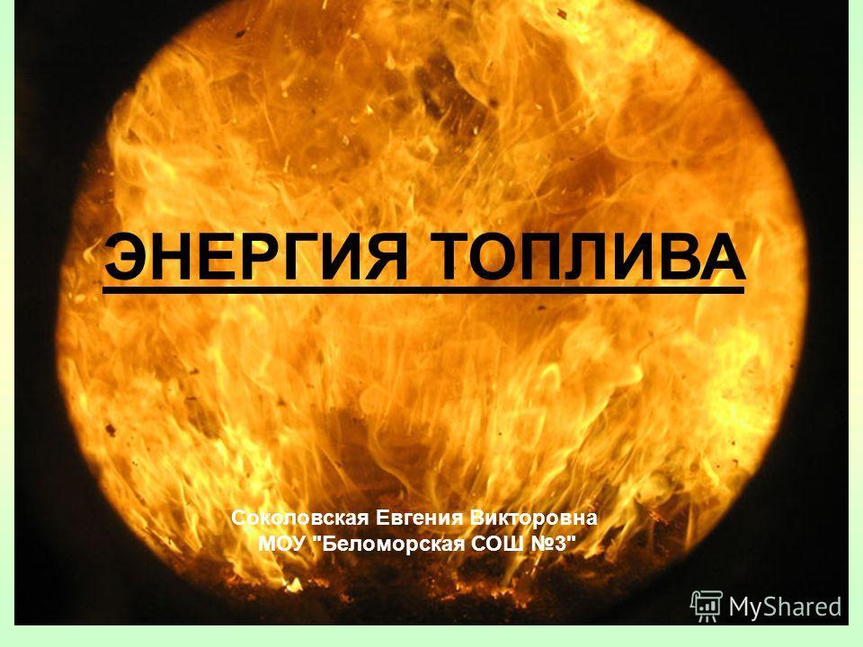 ЭНЕРГИЯ ТОПЛИВА Соколовская Евгения Викторовна МОУ Беломорская СОШ 3