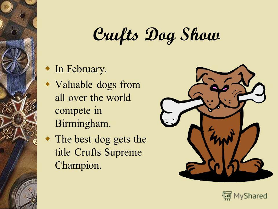Crufts Dog Show In February. Valuable dogs from all over the world compete in Birmingham. The best dog gets the title Crufts Supreme Champion.
