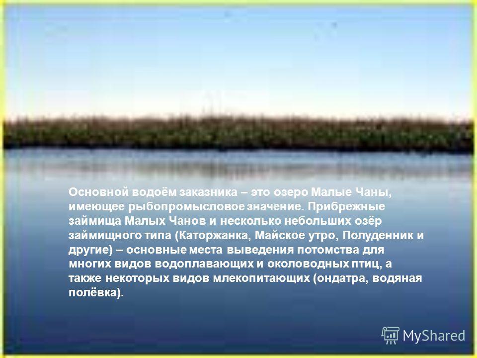 Основной водоём заказника – это озеро Малые Чаны, имеющее рыбопромысловое значение. Прибрежные займища Малых Чанов и несколько небольших озёр займищного типа (Каторжанка, Майское утро, Полуденник и другие) – основные места выведения потомства для мно