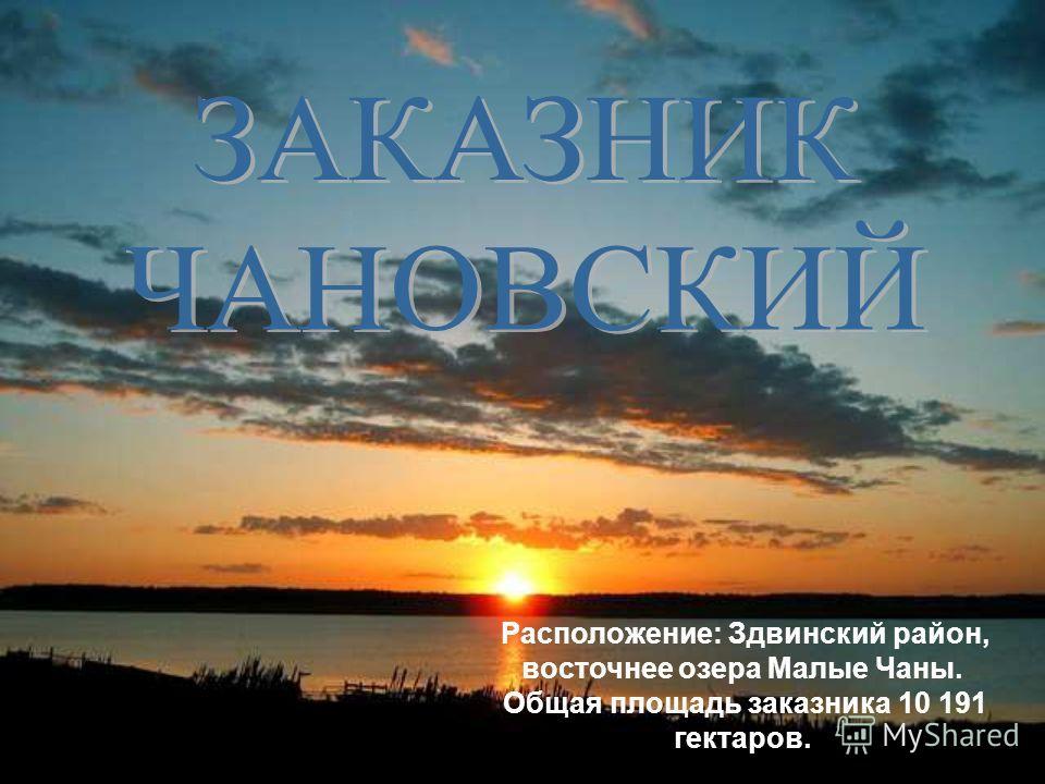Расположение: Здвинский район, восточнее озера Малые Чаны. Общая площадь заказника 10 191 гектаров.