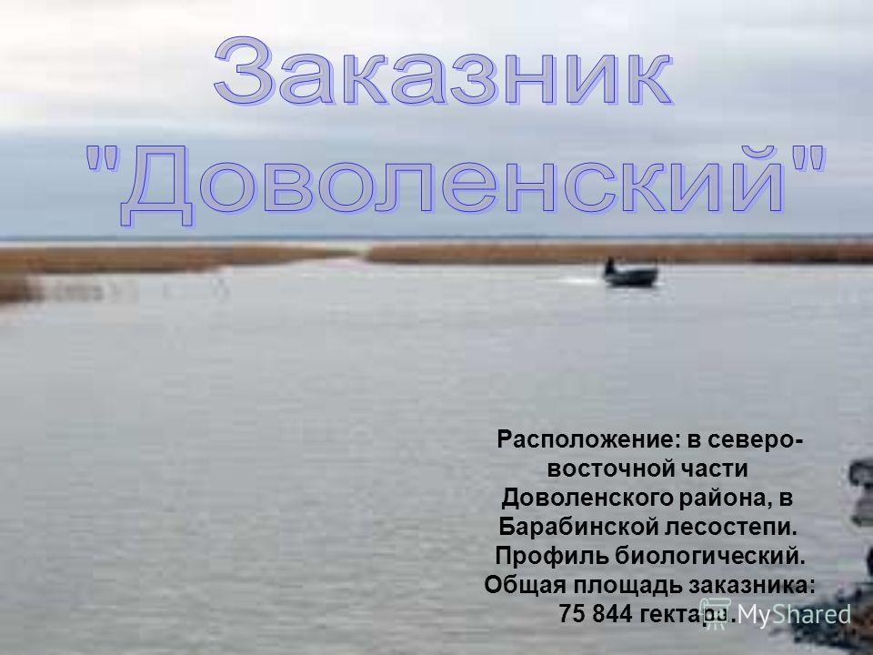 Расположение: в северо- восточной части Доволенского района, в Барабинской лесостепи. Профиль биологический. Общая площадь заказника: 75 844 гектара.