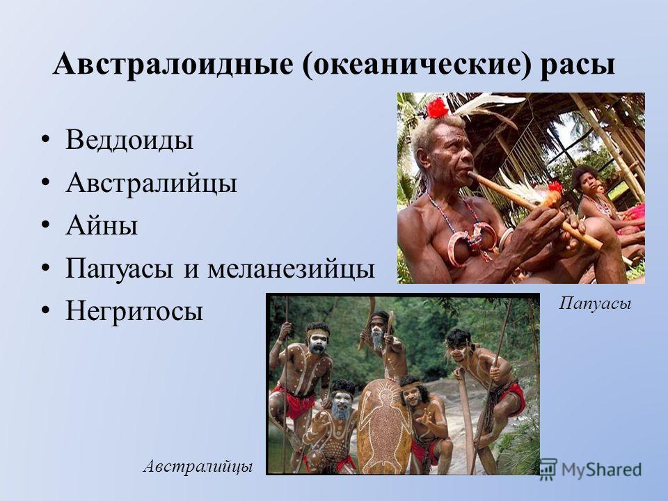 Австралоидные (океанические) расы Веддоиды Австралийцы Айны Папуасы и меланезийцы Негритосы Папуасы Австралийцы