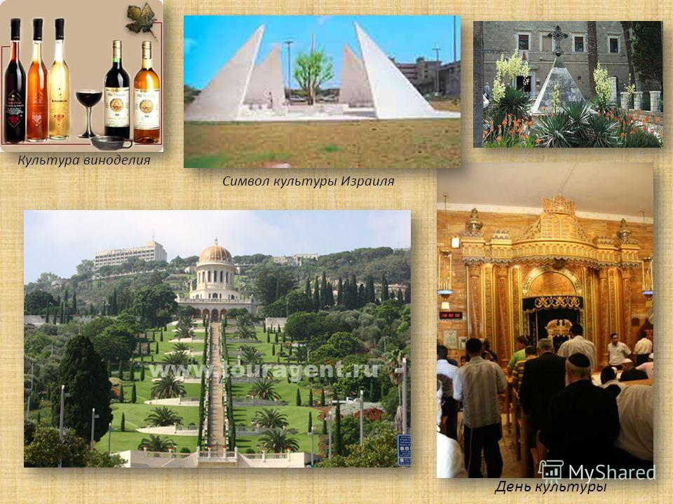 Культура виноделия Символ культуры Израиля День культуры