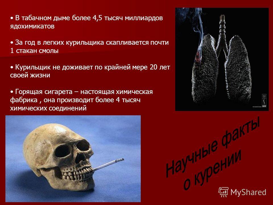 В табачном дыме более 4,5 тысяч миллиардов ядохимикатов За год в легких курильщика скапливается почти 1 стакан смолы Курильщик не доживает по крайней мере 20 лет своей жизни Горящая сигарета – настоящая химическая фабрика, она производит более 4 тыся