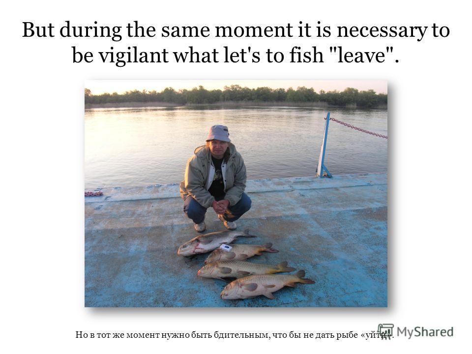 But during the same moment it is necessary to be vigilant what let's to fish leave. Но в тот же момент нужно быть бдительным, что бы не дать рыбе «уйти».