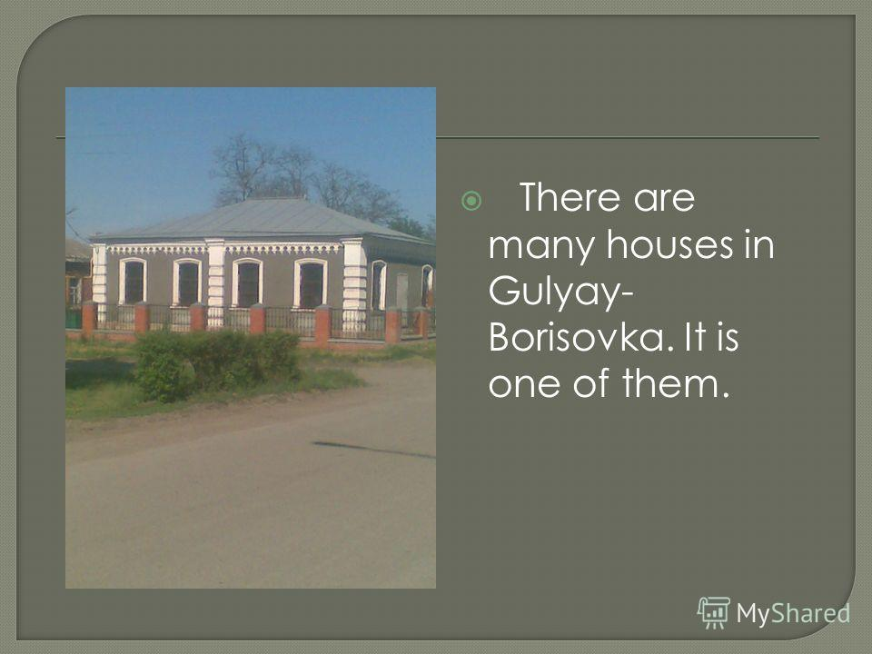 There are many houses in Gulyay- Borisovka. It is one of them.