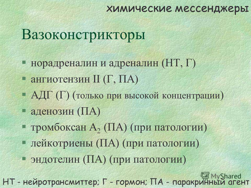 Вазоконстрикторы §норадреналин и адреналин (НТ, Г) §ангиотензин II (Г, ПА) §АДГ (Г) ( только при высокой концентрации ) §аденозин (ПА) §тромбоксан А 2 (ПА) (при патологии) §лейкотриены (ПА) (при патологии) §эндотелин (ПА) (при патологии) НТ - нейротр