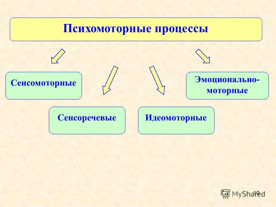 10 Психомоторные процессы Эмоционально- моторные Сенсомоторные СенсоречевыеИдеомоторные