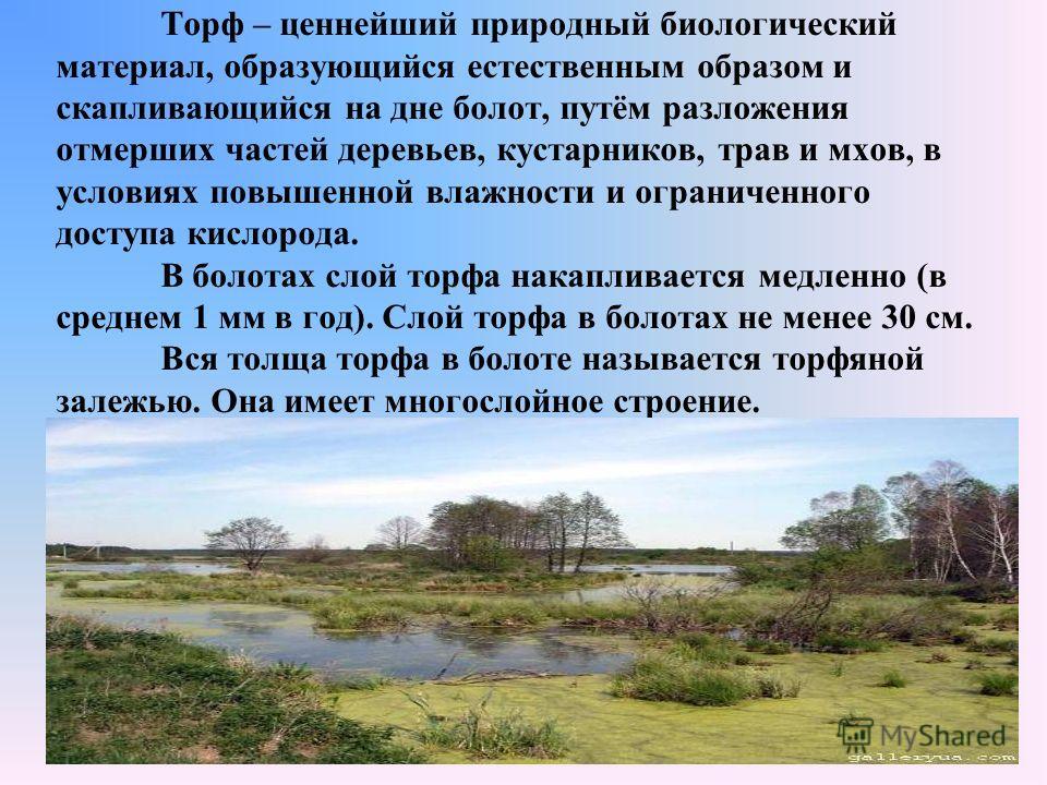 Торф – ценнейший природный биологический материал, образующийся естественным образом и скапливающийся на дне болот, путём разложения отмерших частей деревьев, кустарников, трав и мхов, в условиях повышенной влажности и ограниченного доступа кислорода