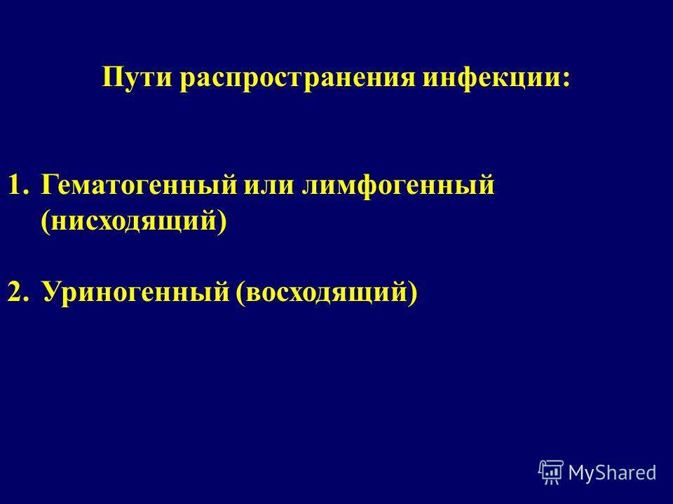 Пути распространения инфекции: 1.Гематогенный или лимфогенный (нисходящий) 2.Уриногенный (восходящий)
