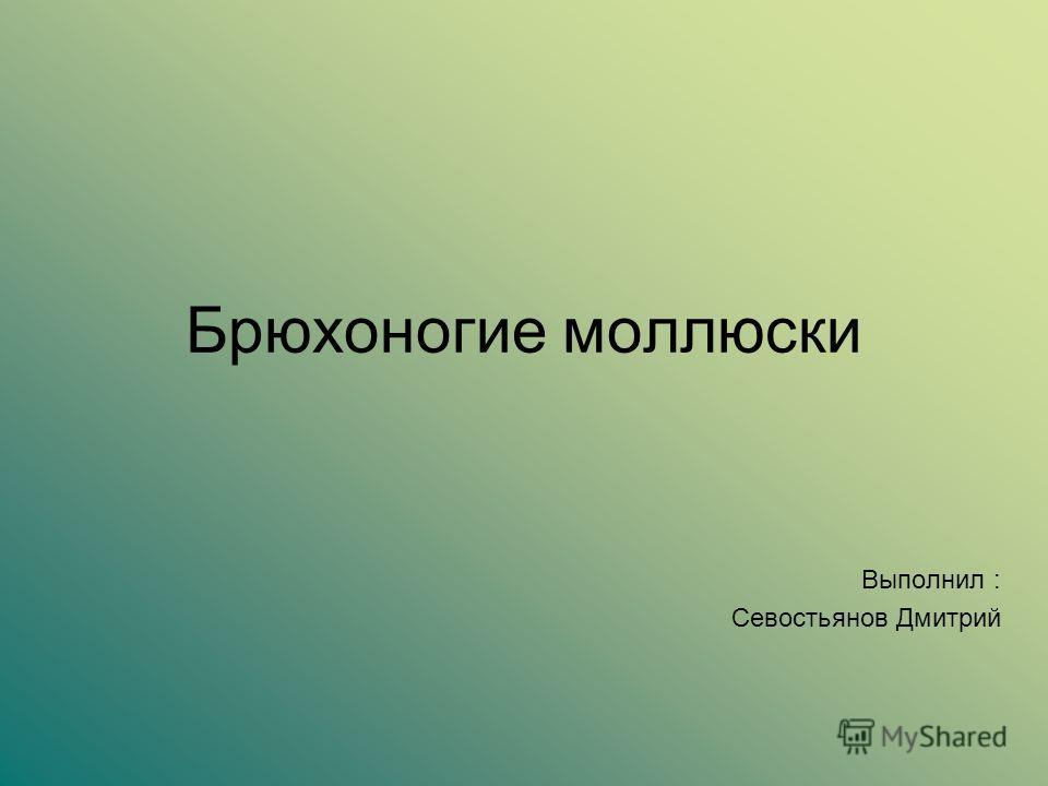 Брюхоногие моллюски Выполнил : Севостьянов Дмитрий