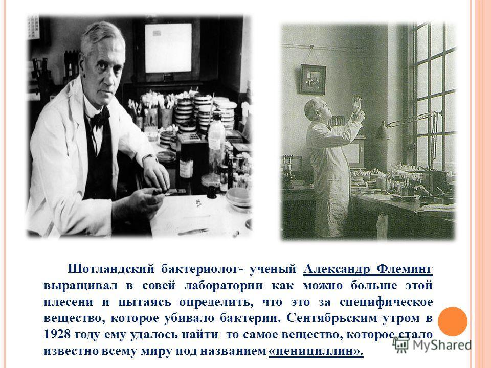 Шотландский бактериолог- ученый Александр Флеминг выращивал в совей лаборатории как можно больше этой плесени и пытаясь определить, что это за специфическое вещество, которое убивало бактерии. Сентябрьским утром в 1928 году ему удалось найти то самое