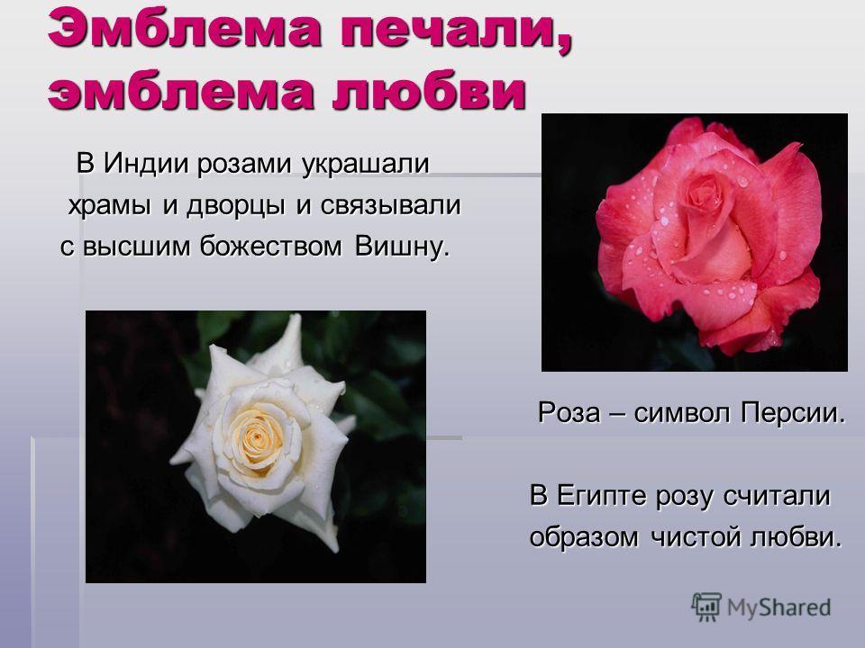 Эмблема печали, эмблема любви В Индии розами украшали В Индии розами украшали храмы и дворцы и связывали храмы и дворцы и связывали с высшим божеством Вишну. Роза – символ Персии. Роза – символ Персии. В Египте розу считали В Египте розу считали обра