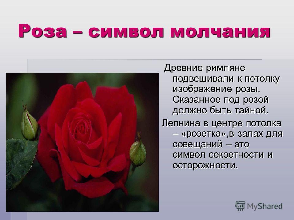 Роза – символ молчания Древние римляне подвешивали к потолку изображение розы. Сказанное под розой должно быть тайной. Древние римляне подвешивали к потолку изображение розы. Сказанное под розой должно быть тайной. Лепнина в центре потолка – «розетка