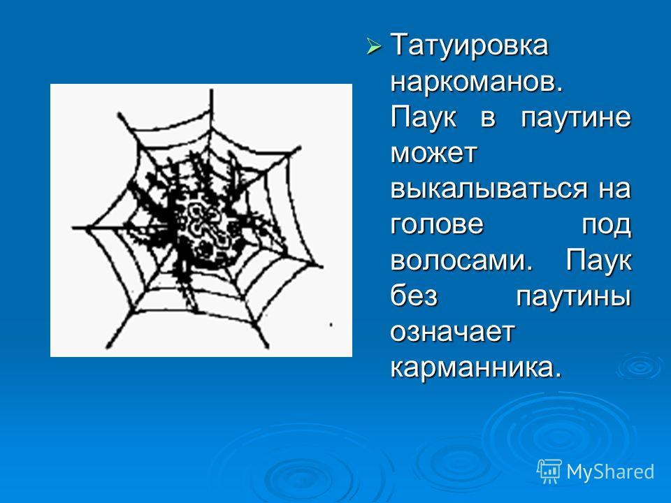 Татуировка наркоманов. Паук в паутине может выкалываться на голове под волосами. Паук без паутины означает карманника. Татуировка наркоманов. Паук в паутине может выкалываться на голове под волосами. Паук без паутины означает карманника.