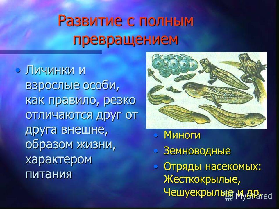 Развитие с полным превращением Личинки и взрослые особи, как правило, резко отличаются друг от друга внешне, образом жизни, характером питанияЛичинки и взрослые особи, как правило, резко отличаются друг от друга внешне, образом жизни, характером пита