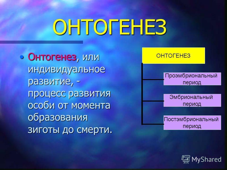 ОНТОГЕНЕЗ Онтогенез, или индивидуальное развитие, - процесс развития особи от момента образования зиготы до смерти.Онтогенез, или индивидуальное развитие, - процесс развития особи от момента образования зиготы до смерти. ОНТОГЕНЕЗ Проэмбриональный пе