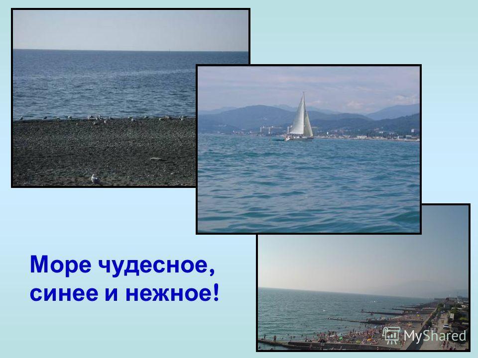 Подводный мир Черного моря Немиро Людмила Васильевна МОУ СОШ 26 г. Сочи Prezentacii.com