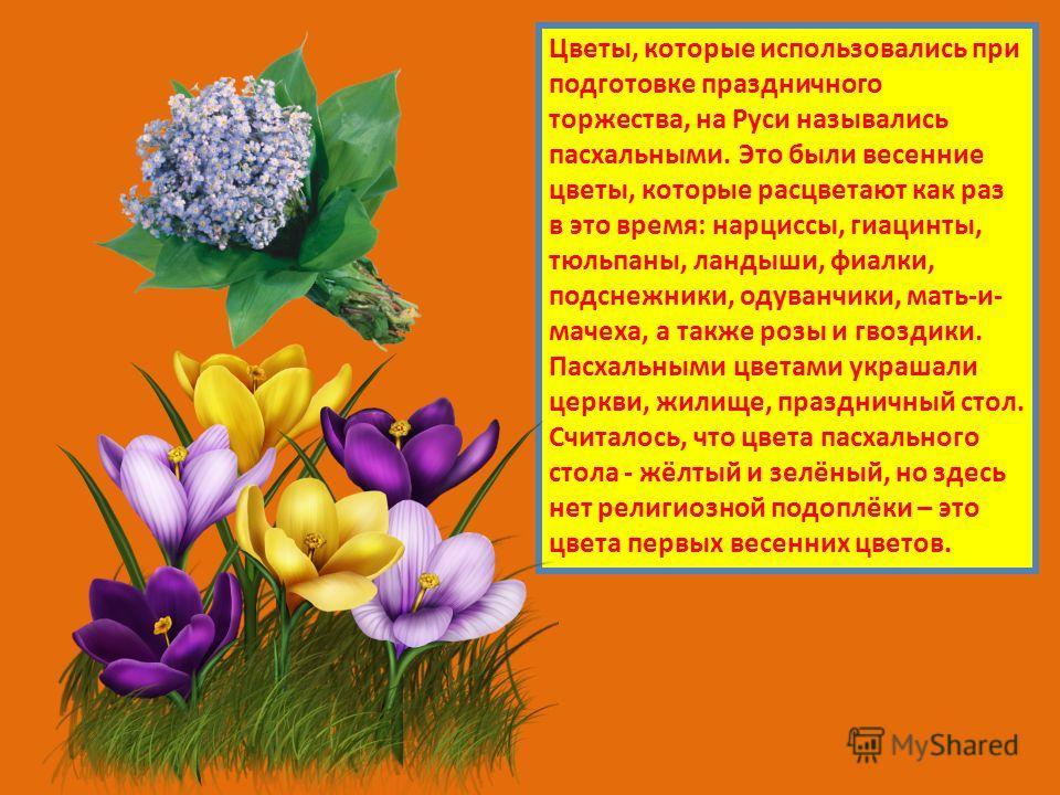 Цветы, которые использовались при подготовке праздничного торжества, на Руси назывались пасхальными. Это были весенние цветы, которые расцветают как раз в это время: нарциссы, гиацинты, тюльпаны, ландыши, фиалки, подснежники, одуванчики, мать-и- маче