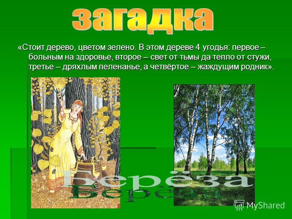 «Стоит дерево, цветом зелено. В этом дереве 4 угодья: первое – больным на здоровье, второе – свет от тьмы да тепло от стужи, третье – дряхлым пеленанье, а четвёртое – жаждущим родник».