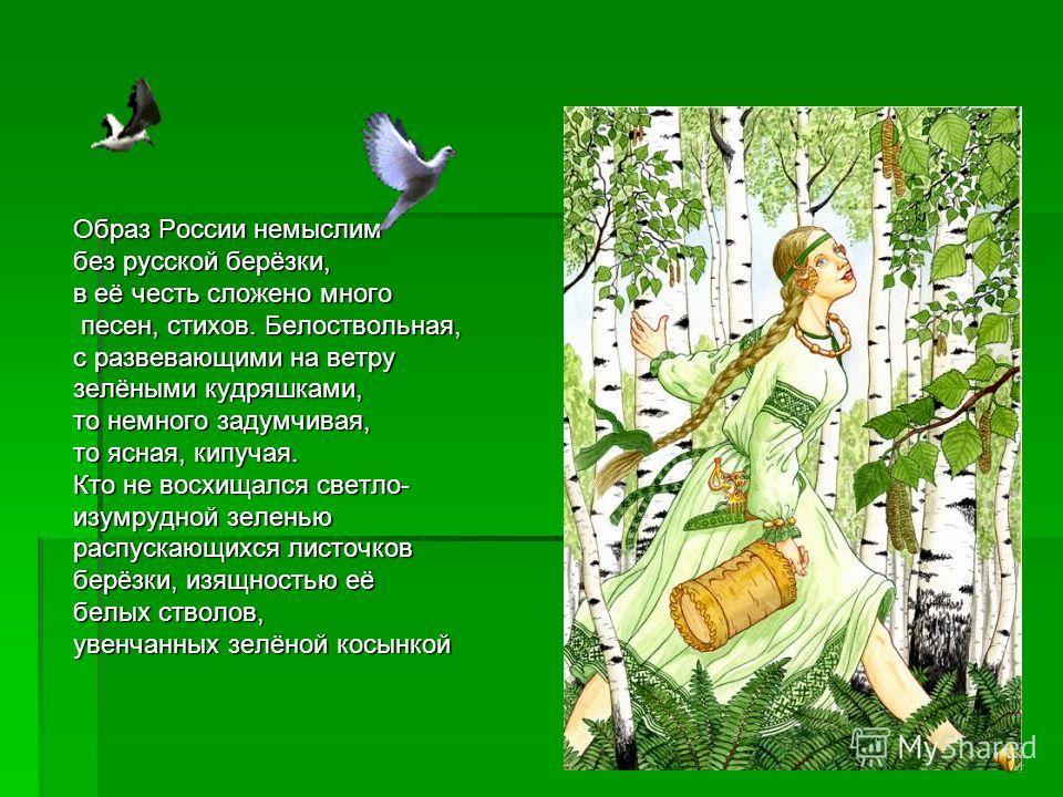 Образ России немыслим без русской берёзки, в её честь сложено много песен, стихов. Белоствольная, песен, стихов. Белоствольная, с развевающими на ветру зелёными кудряшками, то немного задумчивая, то ясная, кипучая. Кто не восхищался светло- изумрудно