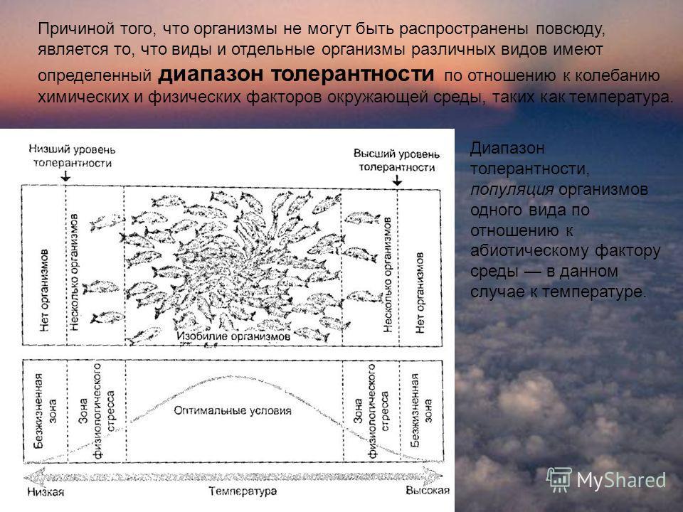 Причиной того, что организмы не могут быть распространены повсюду, является то, что виды и отдельные организмы различных видов имеют определенный диапазон толерантности по отношению к колебанию химических и физических факторов окружающей среды, так