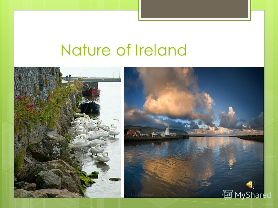 Nature of Ireland