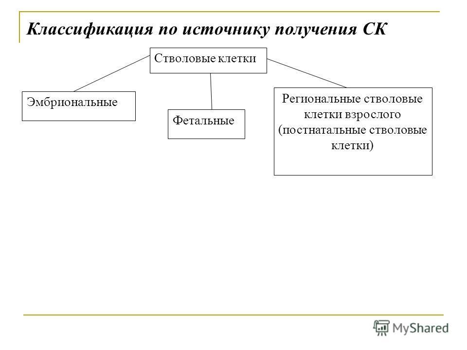 Классификация по источнику получения СК Региональные стволовые клетки взрослого (постнатальные стволовые клетки) Фетальные Эмбриональные Стволовые клетки