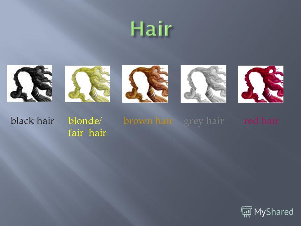 black hairblonde/ fair hair brown hairgrey hairred hair