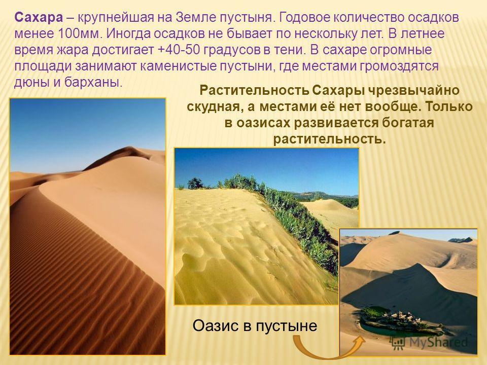 Сахара – крупнейшая на Земле пустыня. Годовое количество осадков менее 100мм. Иногда осадков не бывает по нескольку лет. В летнее время жара достигает +40-50 градусов в тени. В сахаре огромные площади занимают каменистые пустыни, где местами громоздя