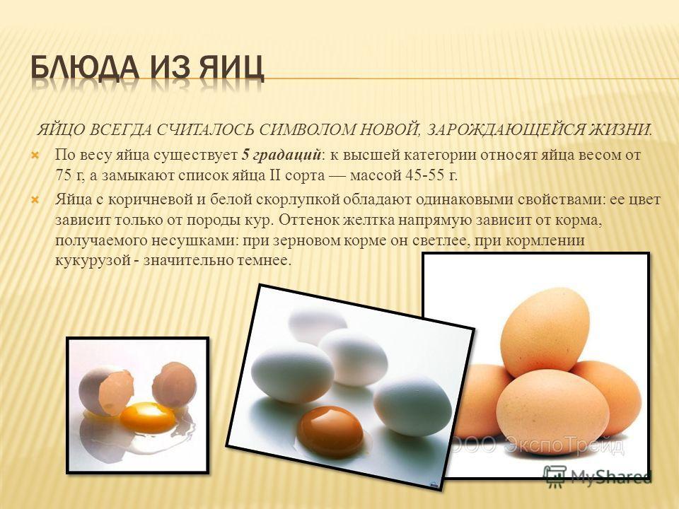 ЯЙЦО ВСЕГДА СЧИТАЛОСЬ СИМВОЛОМ НОВОЙ, ЗАРОЖДАЮЩЕЙСЯ ЖИЗНИ. По весу яйца существует 5 градаций: к высшей категории относят яйца весом от 75 г, а замыкают список яйца II сорта массой 45-55 г. Яйца с коричневой и белой скорлупкой обладают одинаковыми св