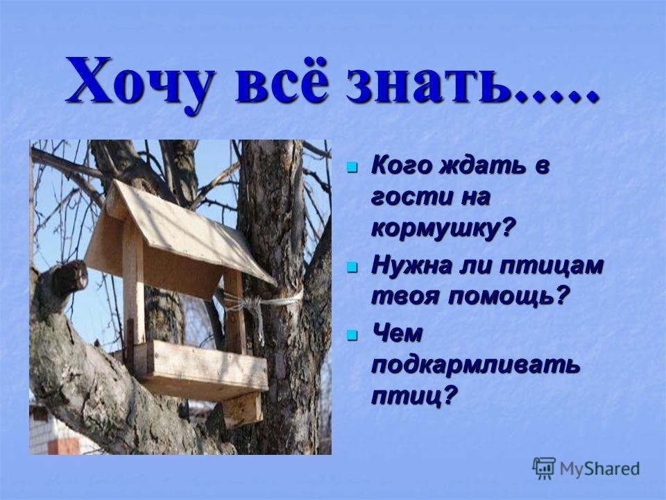 Хочу всё знать ….. Кого ждать в гости на кормушку? Кого ждать в гости на кормушку? Нужна ли птицам твоя помощь? Нужна ли птицам твоя помощь? Чем подкармливать птиц? Чем подкармливать птиц?