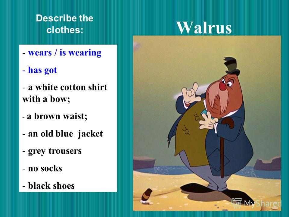 Walrus - wears / is wearing - has got - a white cotton shirt with a bow; - a brown waist; - an old blue jacket - grey trousers - no socks - black shoes Describe the clothes: