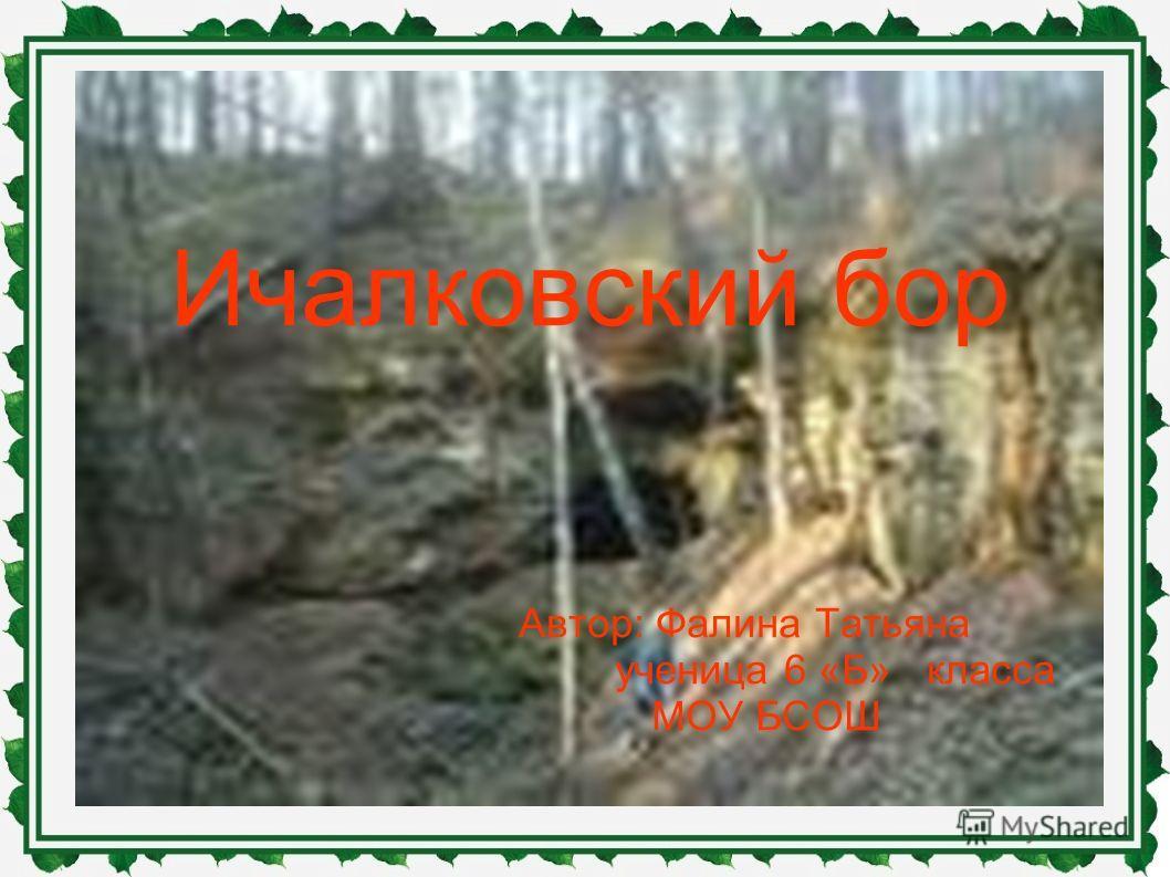 Ичалковский бор Автор: Фалина Татьяна ученица 6 «Б» класса МОУ БСОШ