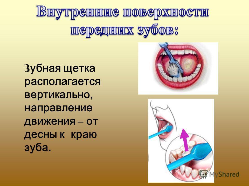 З убная щетка располагается вертикально, направление движения – от десны к краю зуба.