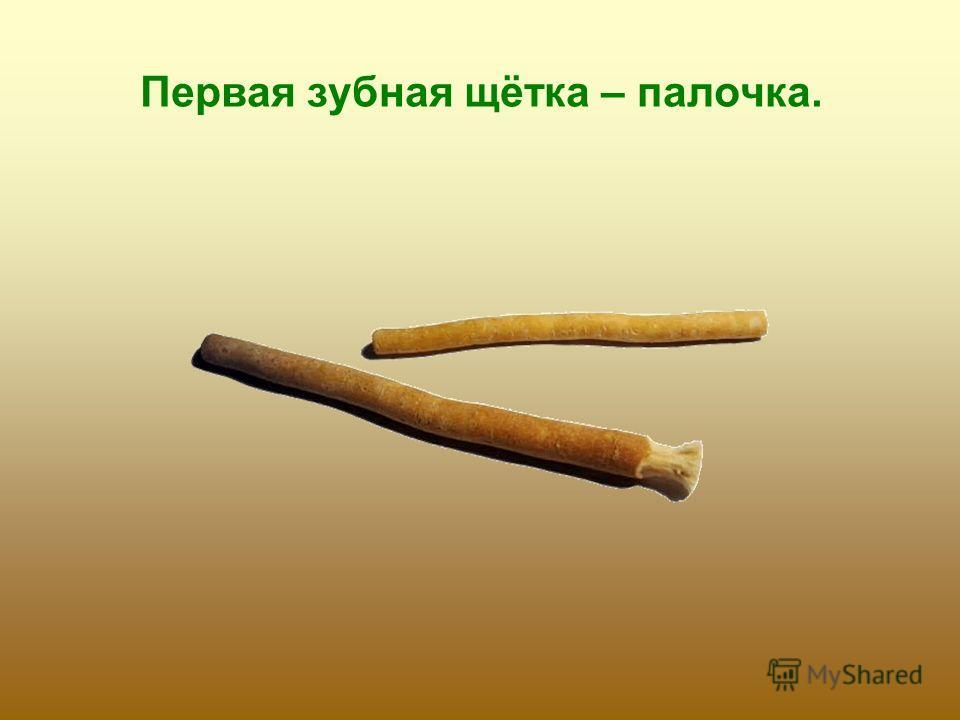Первая зубная щётка – палочка.