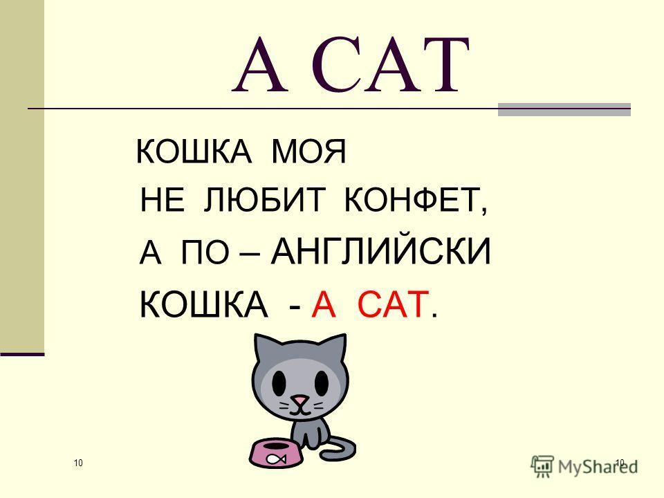 10 A CAT КОШКА МОЯ НЕ ЛЮБИТ КОНФЕТ, А ПО – АНГЛИЙСКИ КОШКА - A CAT.