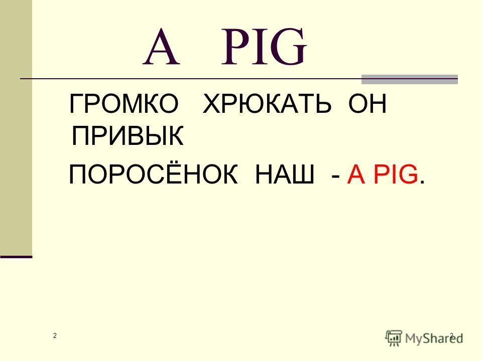 2 2 A PIG ГРОМКО ХРЮКАТЬ ОН ПРИВЫК ПОРОСЁНОК НАШ - A PIG.