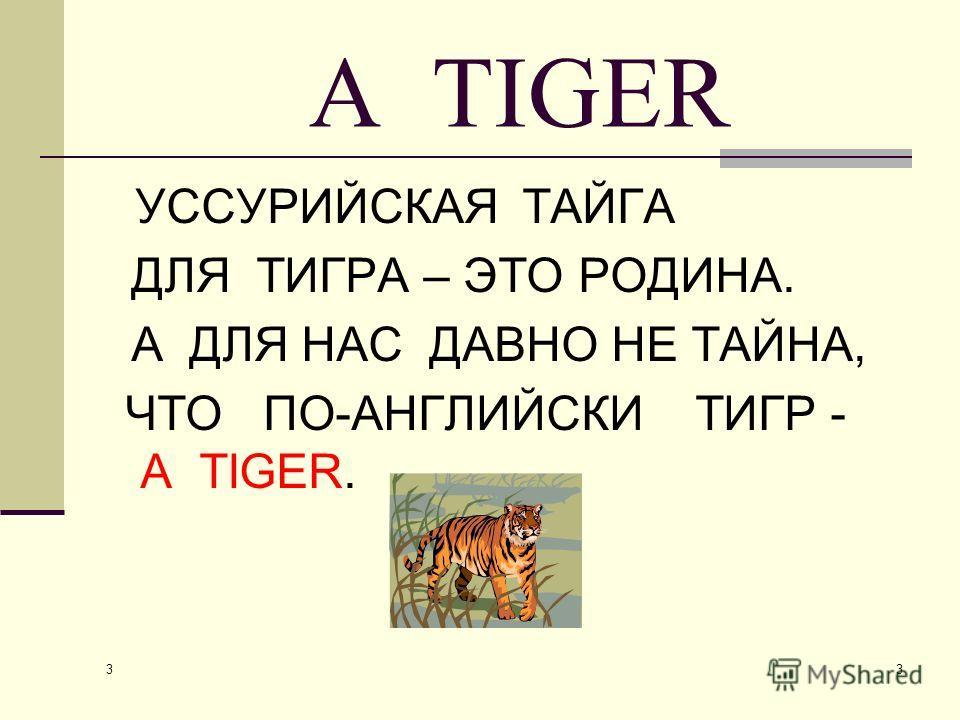 3 3 A TIGER УССУРИЙСКАЯ ТАЙГА ДЛЯ ТИГРА – ЭТО РОДИНА. А ДЛЯ НАС ДАВНО НЕ ТАЙНА, ЧТО ПО-АНГЛИЙСКИ ТИГР - А TIGER.