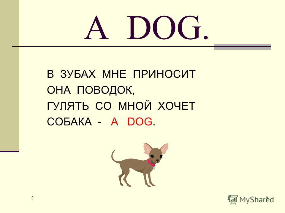 9 9 A DOG. В ЗУБАХ МНЕ ПРИНОСИТ ОНА ПОВОДОК, ГУЛЯТЬ СО МНОЙ ХОЧЕТ СОБАКА - A DOG.
