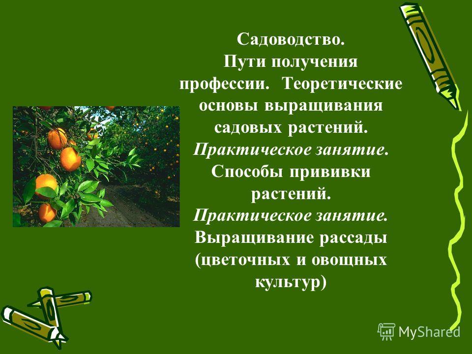 Садоводство. Пути получения профессии. Теоретические основы выращивания садовых растений. Практическое занятие. Способы прививки растений. Практическое занятие. Выращивание рассады (цветочных и овощных культур)
